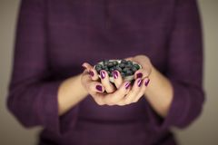 Woman in violett 50`s dress hands holding some blueberries. Sensual studio shot can be used as background royalty free stock image