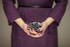 Woman in violett 50`s dress hands holding some blueberries. Sensual studio shot can be used as background Stock Photos