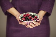 Woman in violett 50`s dress hands holding some raspberries and blackberries. Sensual studio shot can be used as background Stock Photography