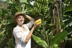 Woman visiting banana plantation Stock Image