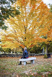 Woman visiting grave in cemetery. A back view of an elderly woman sitting on a bench in a cemetery in Autumn royalty free stock images