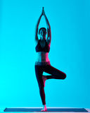 Woman Vriksasana yoga exercices tree pose. One caucasian woman exercising tree pose Vriksasana yoga exercices  in silhouette studio isolated on blue background Stock Photography