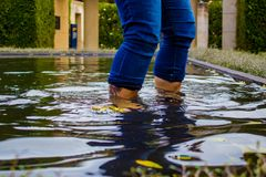 Woman Wading in Pond at Hamilton Gardens, New Zealand. Woman wading through pond at Hamilton Gardens in Hamilton, New Zealand, Aotearoa Stock Photo
