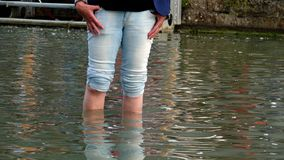 Woman wading through water. With coiled pants in a flooded street royalty free stock photo