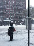 Woman Waiting. A lady standing in the snow during a snowstorm in Manhattan / New York City / NYC / Yorkville waiting for a public transportation bus on the side Royalty Free Stock Image