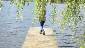 Woman walk wood lake bridge willow tree swan bird meet angry. Woman walk on wooden lake bridge under willow tree and swan bird meet pugnacious angry stock footage