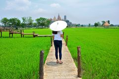 The woman walked back and turned a white umbrella on the wooden bridge. There are grasslands and Buddhist temples background royalty free stock photos