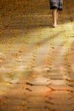 woman walking Stock Images