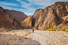The woman walking along Black canyon Stock Photography