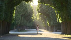Woman walking along the park alley. Woman in white dress walking on the park alley at sunset. The sun's rays illuminate the path, and the bugs fly in the sun stock video footage