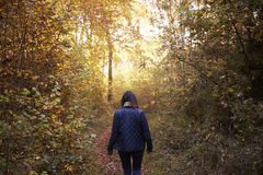 Woman Walking Along Path In Autumn Woodland Royalty Free Stock Image