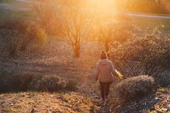 woman walking along a path with flower in her hand - happy traveler enjoying sunset view royalty free stock photo