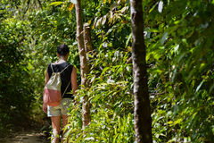 Woman walking along a path through jungle Stock Image