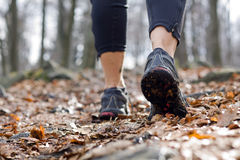 Woman walking in autumn forest Royalty Free Stock Photo
