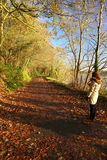 Woman walking in autumn park. Co.Cork, Ireland. Stock Images