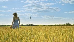 Woman walking away in agriculture field. Alone concept