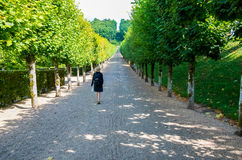 Woman walking away in French garden Stock Images