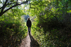 Woman walking at a backlit footpath Royalty Free Stock Photo