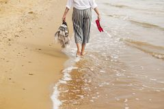 Woman walking barefoot on beach, back view of legs. Young girl relaxing on sandy beach, walking with shoes and bag in hands. stock image