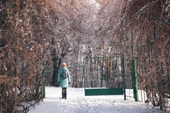 Woman walking in beautiful winter city park Stock Photography
