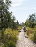 Woman walking in the the belgium ardennes royalty free stock image