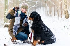 Woman walking Bernese mountain dog on a winter day. In the snow royalty free stock photo