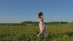 Woman walking on a blooming yellow field in a dress and turning around in place. Attractive caucasian woman walks on a blooming yellow field in a beauty dress stock video