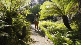 Girl walking through lush bushes. Woman walking on camera through lush fern bushes. Pretty young girl in casual clothes looking away while walking along park stock video footage