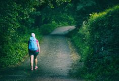 Woman walking on Camino de Santiago royalty free stock photo