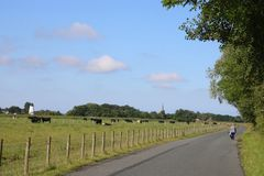 Woman walking countryside road Pilling Lancashire. Lone female walker on countryside road, Back Sands Lane, with cattle in roadside field and views to Pilling royalty free stock images