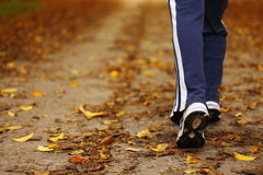 Woman walking cross country trail in autumn forest stock photography