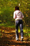 Woman walking cross country trail in autumn forest Stock Images