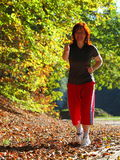 Woman walking cross country trail in autumn forest Royalty Free Stock Image
