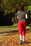 Woman walking cross country trail in autumn forest Stock Photo