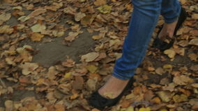 Woman walking cross country and trail in autumn stock video footage