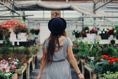 Woman Walking Between Display of Flowers and Plants Stock Photo