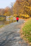 Woman Walking Dog. In Autumn Royalty Free Stock Images