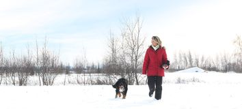 Woman walking with dog Stock Photos
