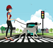 Woman walking dog. Woman and dog walking across the crosswalk with the sky as a backdrop Stock Photos