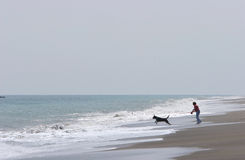 Woman walking dog on beach with rough seas Royalty Free Stock Photos