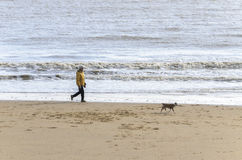 Woman walking dog beach sea Stock Images