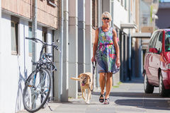 Woman walking with a dog in the city. Woman walking with a dog at the leash in the city Royalty Free Stock Photography