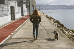 Woman walking the dog. Middle-aged woman walking the dog Royalty Free Stock Images