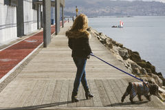Woman walking the dog Royalty Free Stock Image