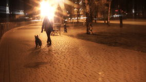 Woman walking with a dog. On night city stock footage