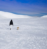 Woman walking with dog in snow Stock Image