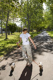 Woman walking dogs in park Royalty Free Stock Images