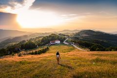 Woman walking down the hill at sunset. Woman walking down the hill with a view at sunset stock photos