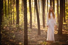 Woman walking at forest Stock Photos