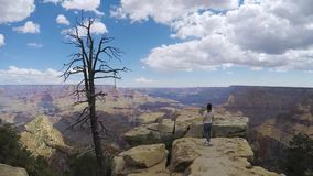 Woman walking in Grand Canyon. Near cliff stock video